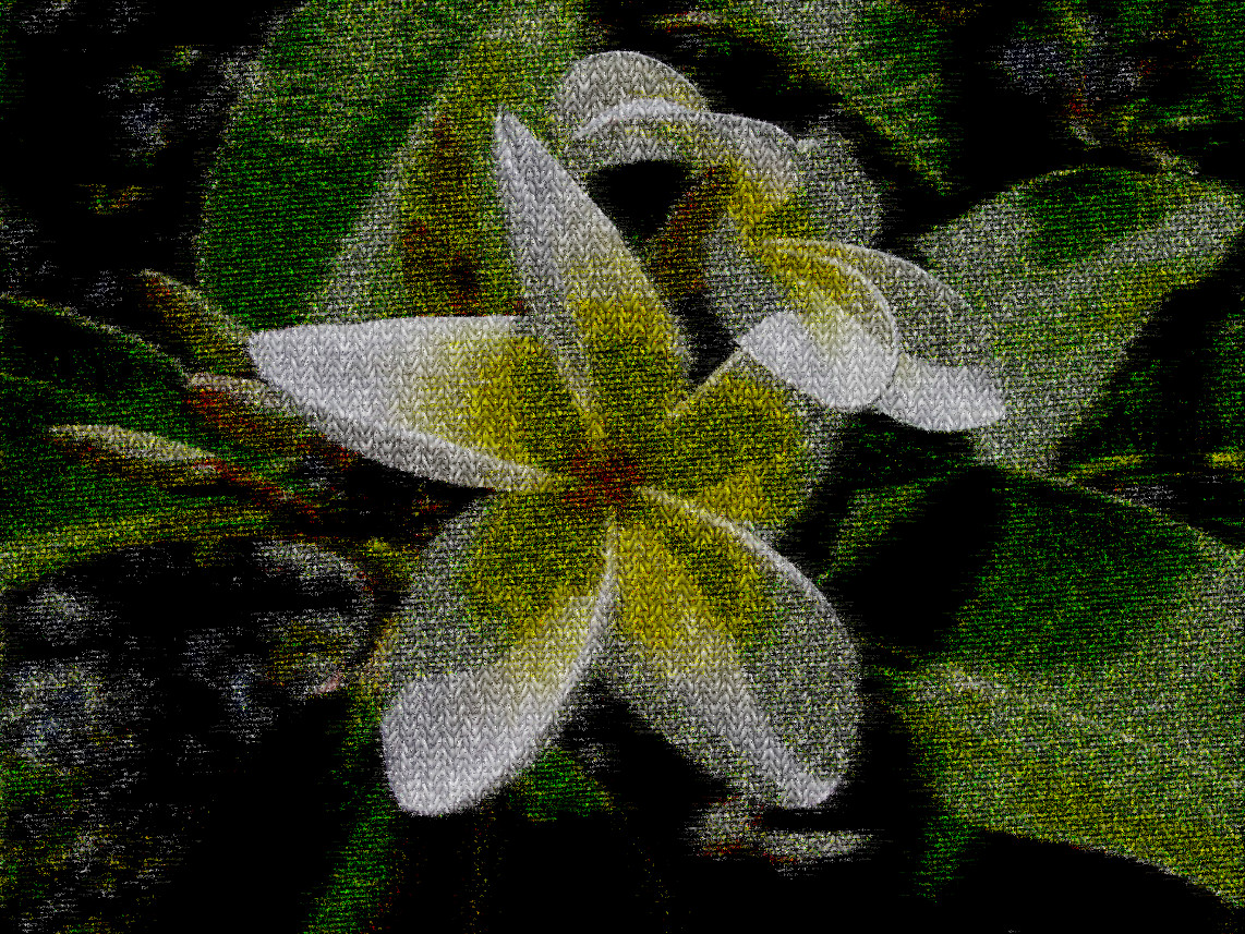 2017-10-03 15-22-15 plumeria-209904_960_720, having a knitted look, on 13 colour areas.jpg