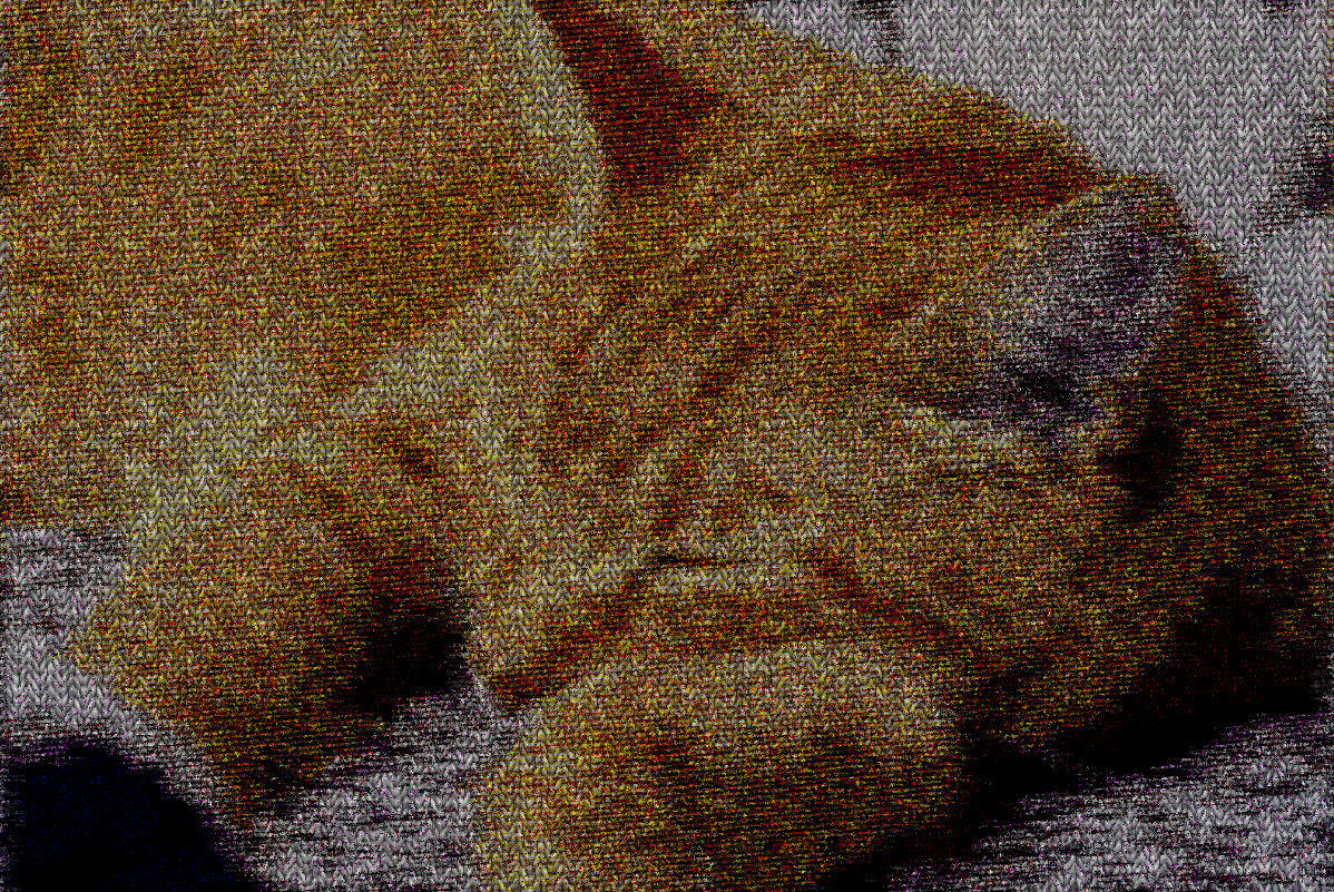 2017-10-03 15-31-20 sleeping_kitties_are_the_best__by_lucytherescuedcat-d8ijsys, having a knitted look, on 13 colour areas.jpg