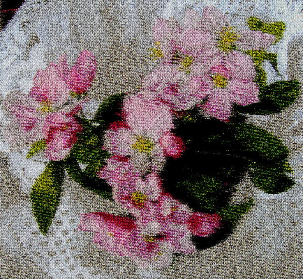 apple-blossom-57132_DN_PlainKnittedLook.jpg