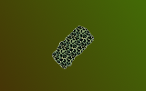 LeopardLayer.png